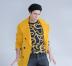 Nayan_yellow_cropped
