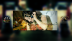 Copy_of_youtube_banner__11_