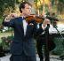 Wedding_violin