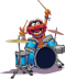Animal_drummer