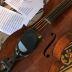 Online_cello_emily_burridge__arrangement_soundcloud_pic