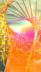 210412_tegaro_canvas_v03_hp