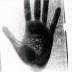 The_hand