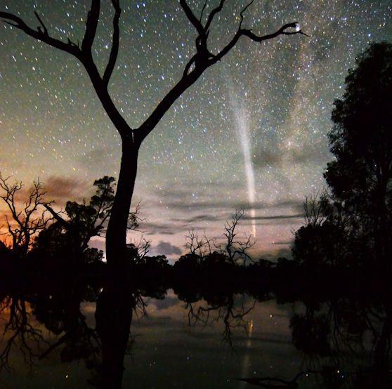 Epic_aussie_swamp_night