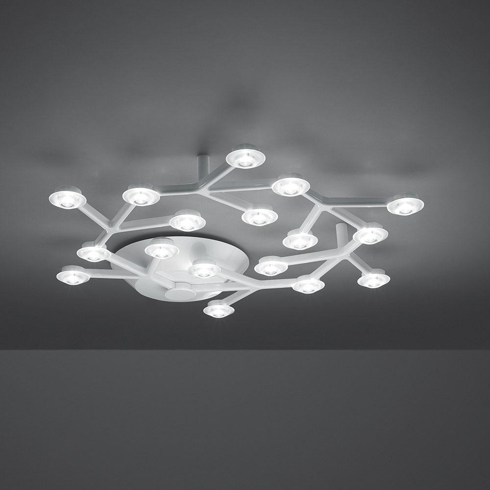 LED NET