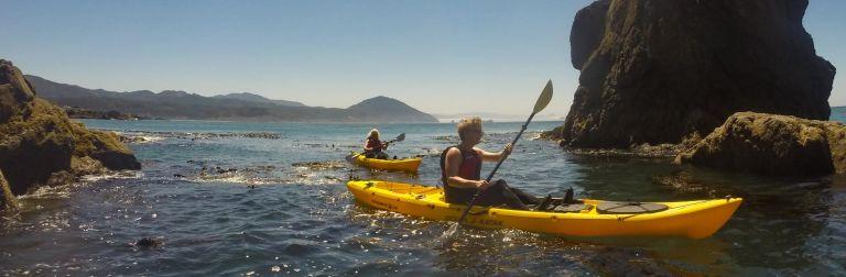 Port Orford Ocean Wildlife Kayaking