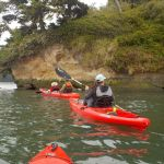 south-coast-tours-south-slough-sept17-2