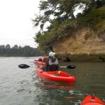 south-coast-tours-south-slough-sept17-3