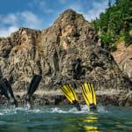 snorkel-tour-home-page