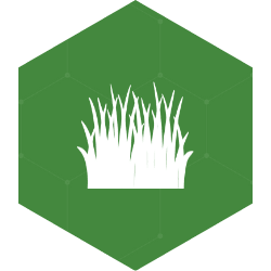 Turf Grass Carbon