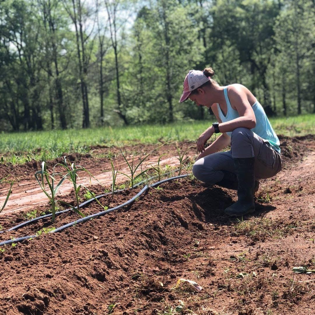 Farm Athens GA