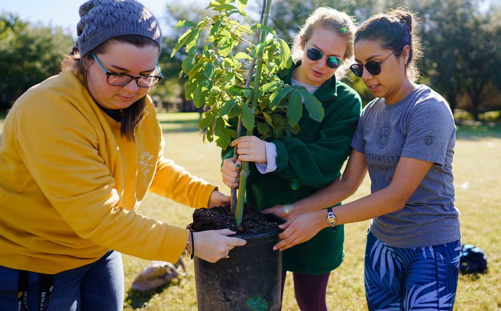 Southwestern University students in the garden