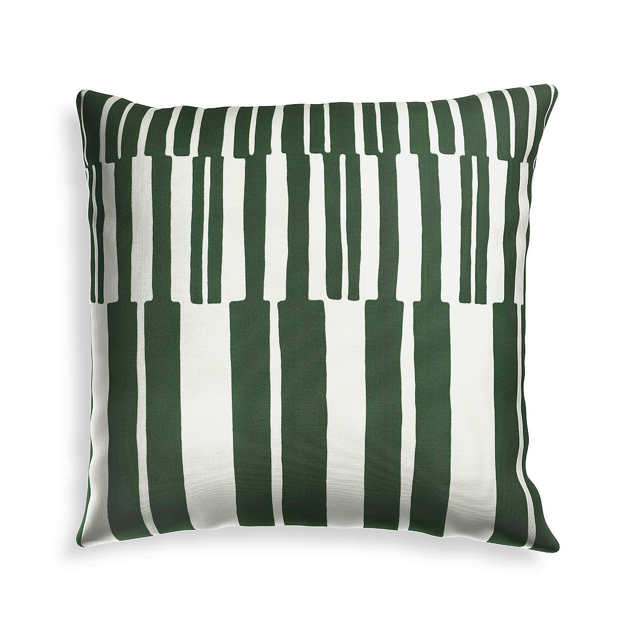 Crate and Barrel outdoor pillow