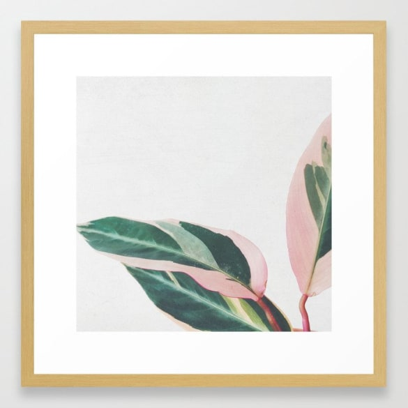 Pink Leaves Framed Print