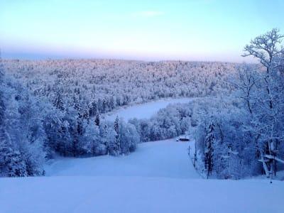 Лыжная трасса и парк активного отдыха