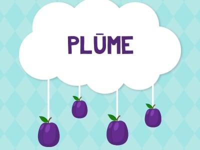 Playroom Plum (up to 12 children)