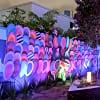 Luxury Miami Wynwood Arts District Space - 4