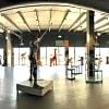 Luxury gallery event venue in Miami - 2