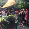 Beautiful private garden in Ft. Greene! - 2