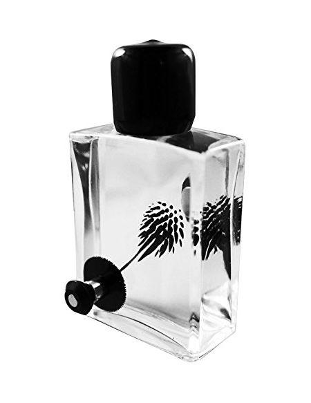 Concept Zero CZ-SQRD60BK-1 Squared Magnetic Display ferrofluide Desktop (60ml), Verre, Noir, 20 x 7 x 5 cm