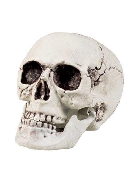 Boland 74362Maxilla -Crâne avec mâchoire articulée, 17x 15cm - Blanc