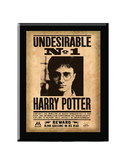 Plaque Indésirable No. 1 - Harry Potter
