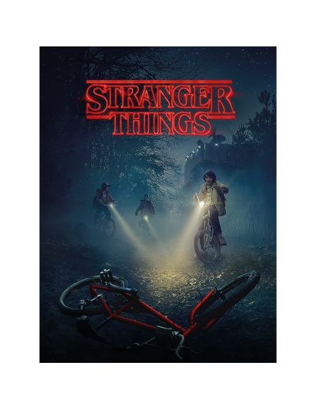 Stranger Things (Bike) 60 x 80cm Canvas Print