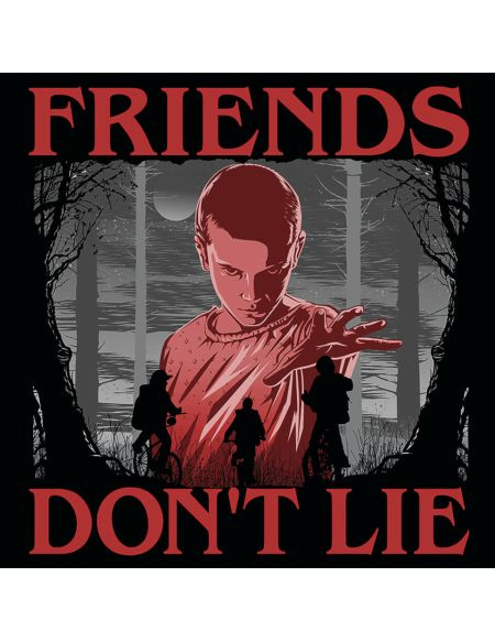 Stranger Things (Friends Don't Lie) 40 x 40cm Canvas Print