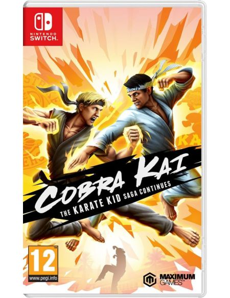 Cobra Kai : The Karate Kid Saga Continues Nintendo Switch