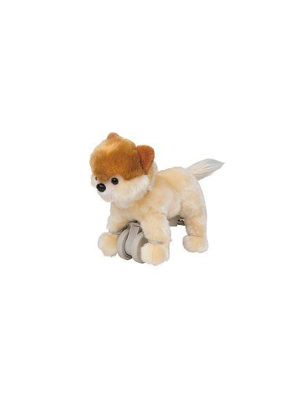 Puppy Parade Poméranien Sammy