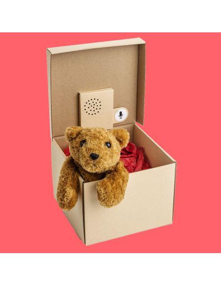 Voice Box - Boîte Cadeau À Message Vocal