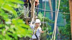 groepsactiviteiten Center Parcs Erperheide The High Adventure