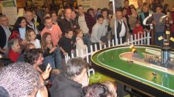 kinderactiviteiten Tierce Events Interactieve Paardenraces Kids