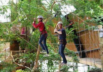Teambuilding Center Parcs Vossemeren Indoor High Adventure B2B
