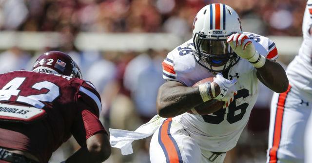 Auburn running back Kamryn Pettway (Butch Dill/Getty Images)