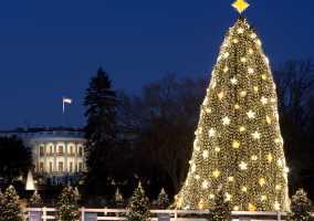 national christmas tree parking information - Washington Dc Christmas Tree