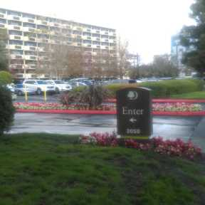 Photo of San Jose DoubleTree San Jose Airport - Uncovered Valet