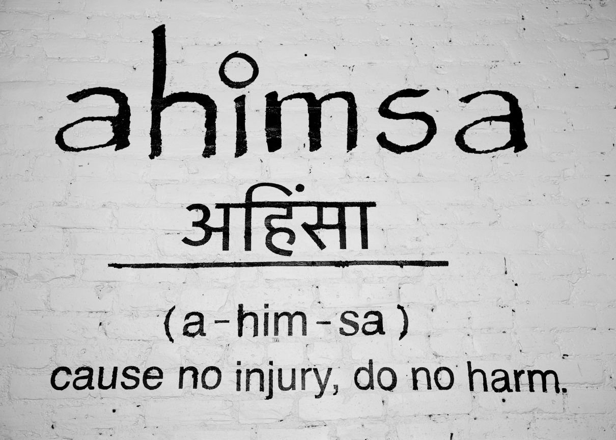 Image result for ahimsa cause no harm