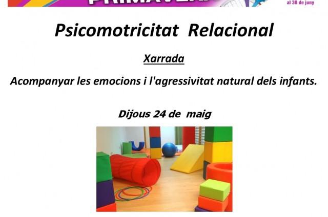 XERRADA I TALLER DE PSICOMOTRICITAT RELACIONAL