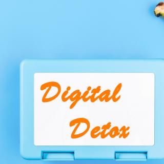 Digital Detox Afterlife of a Tech User