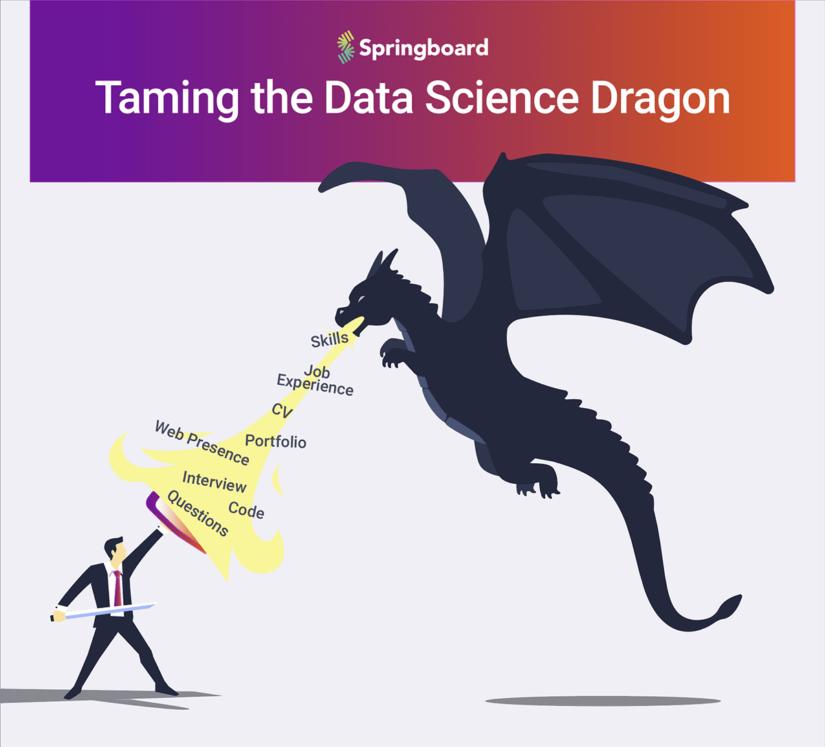 Is Data Science Hard: Taming the Data Science Dragon