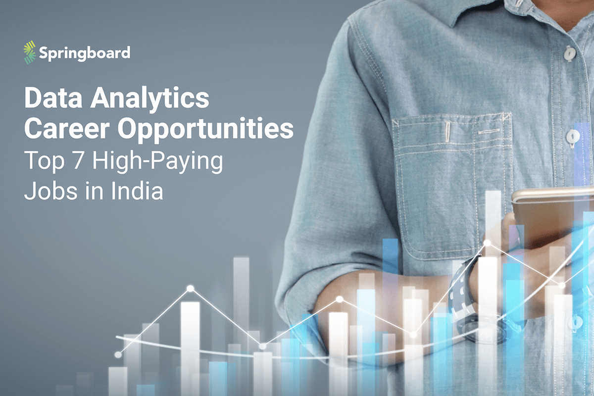 Data Analytics Career Opportunities: Top 7 High-Paying ...