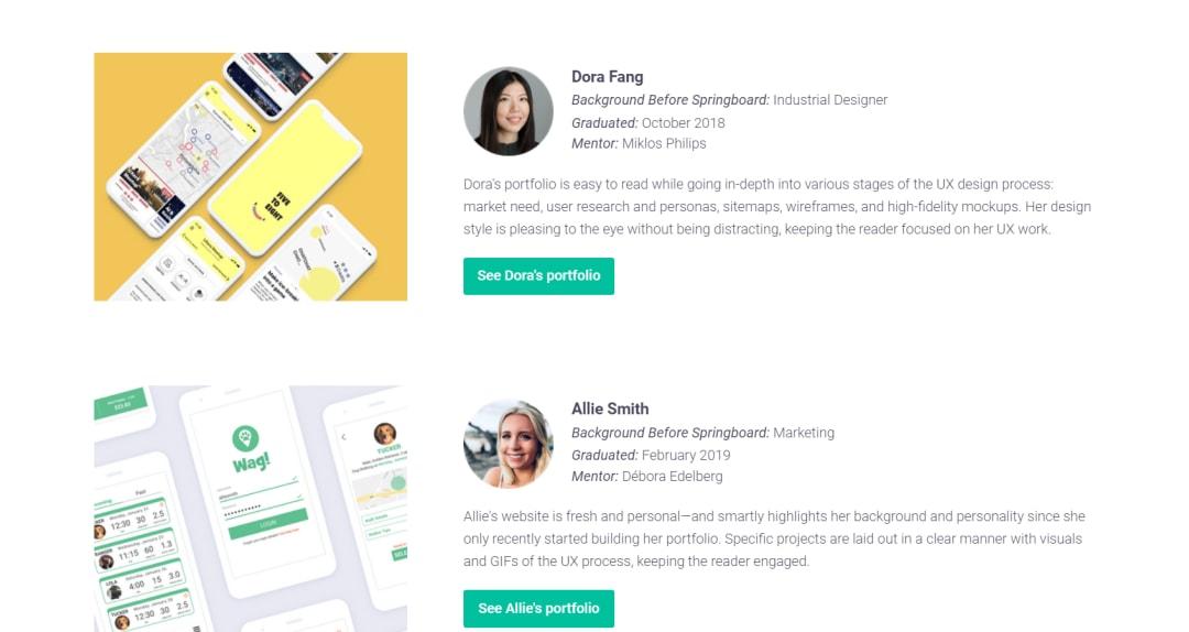 Springboard UX design portfolio expamples