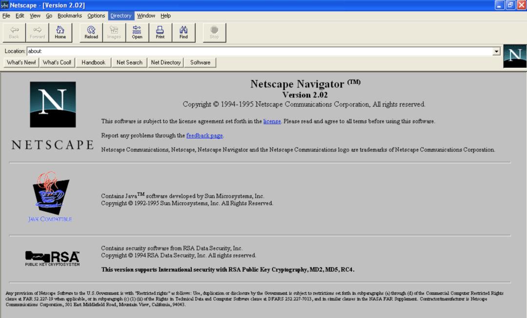 JavaScript in Netscape