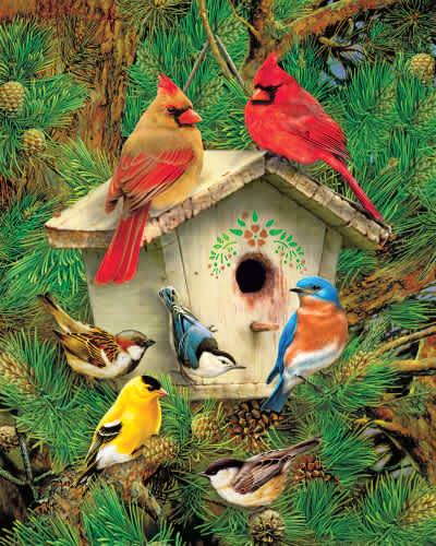 Feathered Retreat 1000 Piece Jigsaw Puzzle