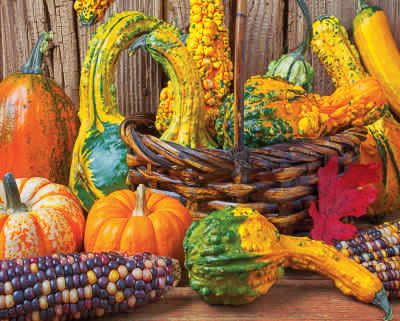 Harvest Colors 1000 Piece Puzzle