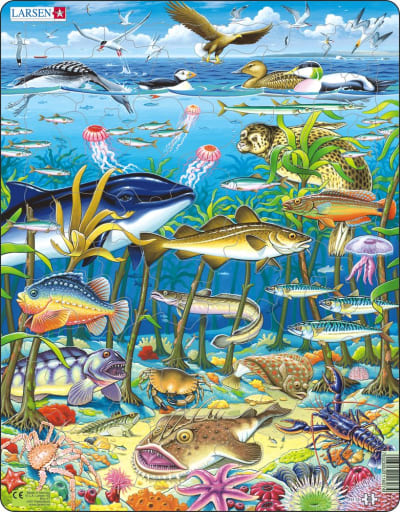 Marine Life in the North Atlantic 60 Piece Children's Jigsaw Puzzle