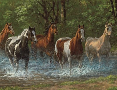 Summer Creek 36 Piece Jigsaw Puzzle