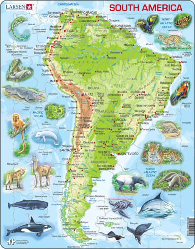 South America Map with Animals Educational 65 Piece Jigsaw Puzzle