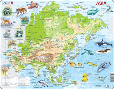 Asia Map with Animals Educational 63 Piece Jigsaw Puzzle
